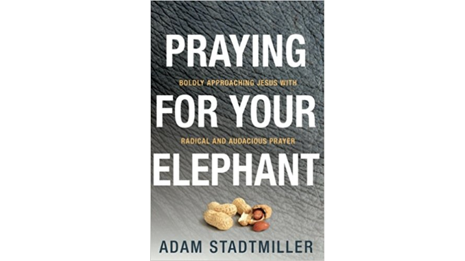 Praying for Your Elephant - Adam Stadtmiller